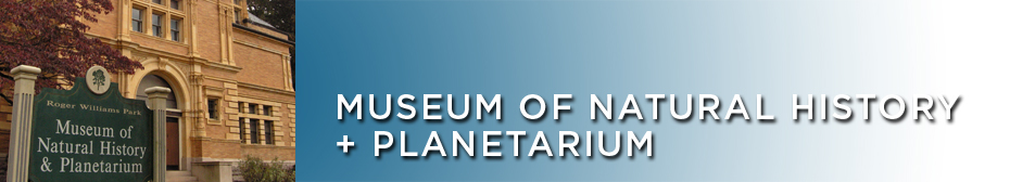 Strange and Distant World Planetarium Show