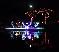 Illuminated Swan Paddleboat Rides